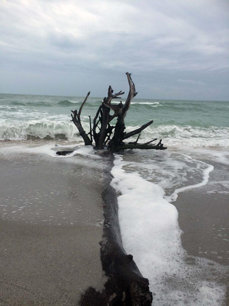 Que visiter à Naples Floride