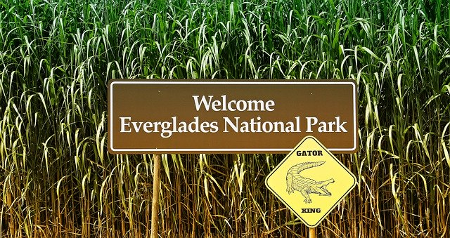 Le parc national des Everglades en Floride