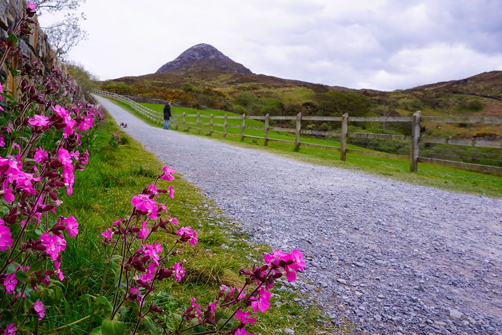 Connemara road trip Irlande