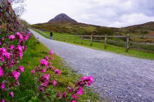 Connemara road trip Irlande
