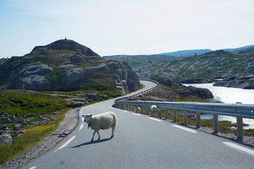 La route 45 entre Stavanger et Lysebotn