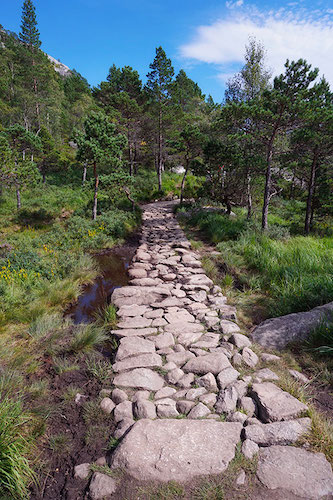 Chemin de randonnée, Preikestolen, Norvège