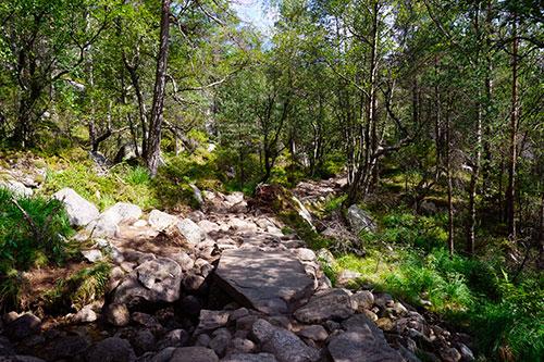 Preikestolen en Norvège - La nature du terrain