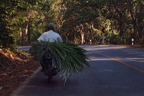 Scooter sur les routes de Thaïlande