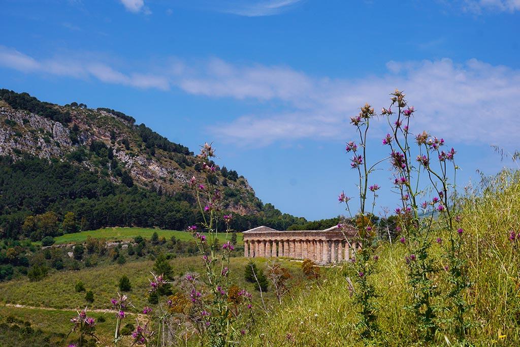 Vue lointaine du temple de segeste