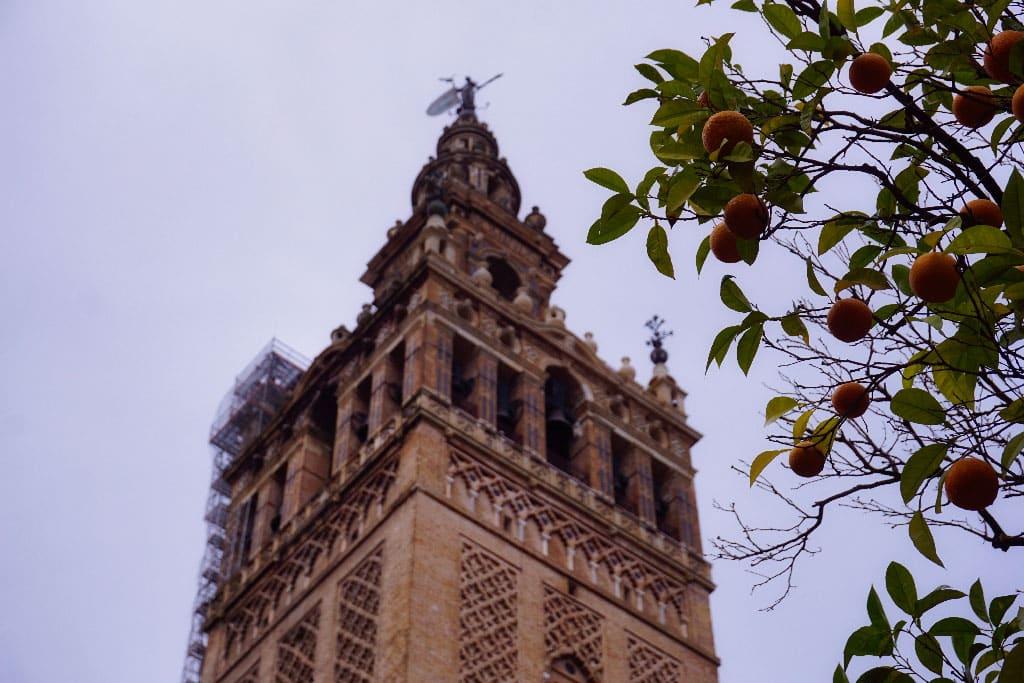 La Cathédrale de Seville en Espagne