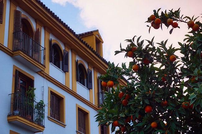 Le quartier de Triana à Séville en Espagne