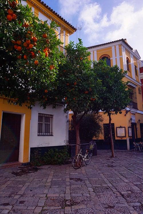 Le quartier de Santa Cruz, le plus beau quartier de Seville en Espagne