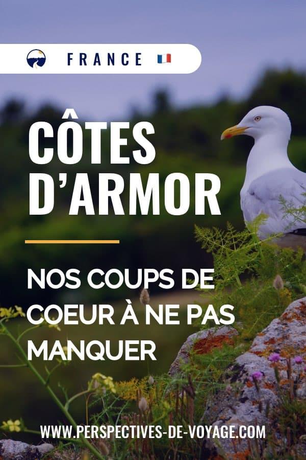 Côte d'Armor : Nos coups de coeur à ne pas manquer