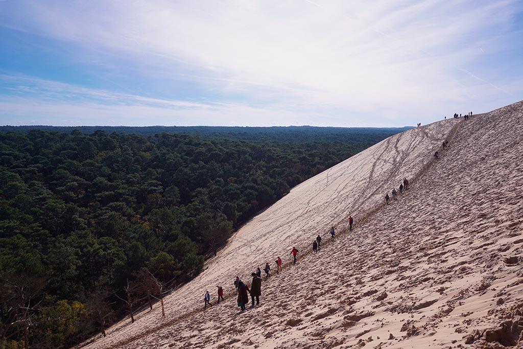 Image des pentes de la dune du pilat avec la forêt des landes en arrière plan