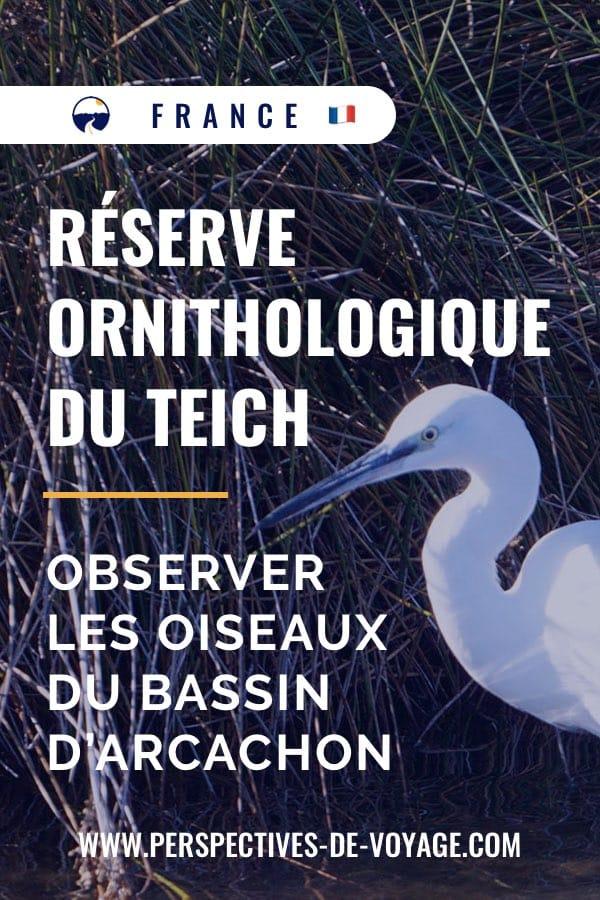 Epingle Pinterest pour la réserve Ornithologique du Teich