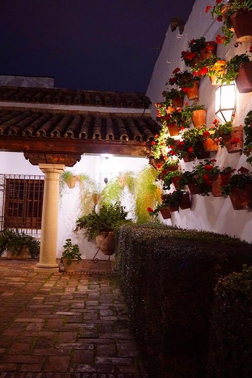 Photographie d'un mur fleuri d'un patio du palais de Viana a Cordoue