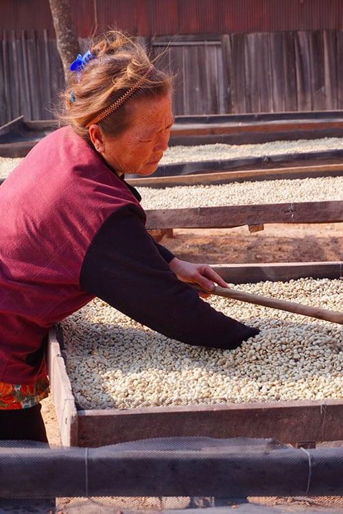 Photographie d'une femme Hmong