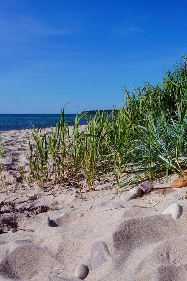 Photo d'une plage de sable en Suède