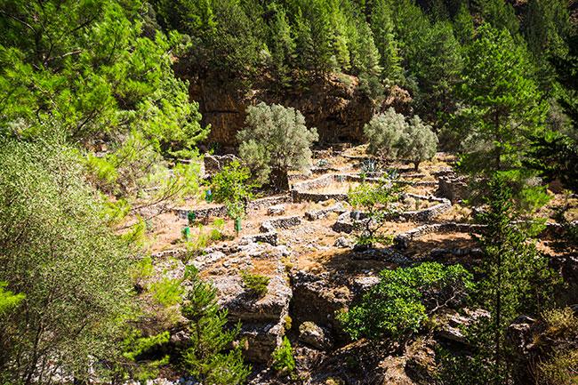 Photographie des vestiges du villages de Samaria dans les gorges du même nom