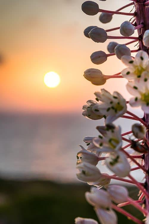 photographie d'un coucher de soleil en Crète