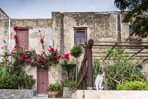 Photographie du monastère de Preveli en Crète