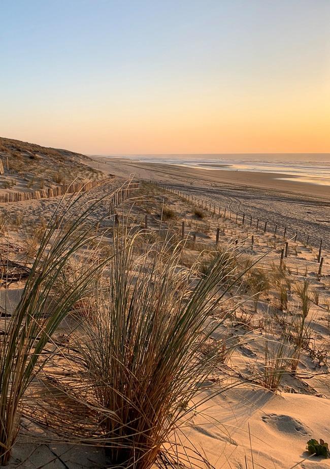 Photographie de la plage du porge ocean
