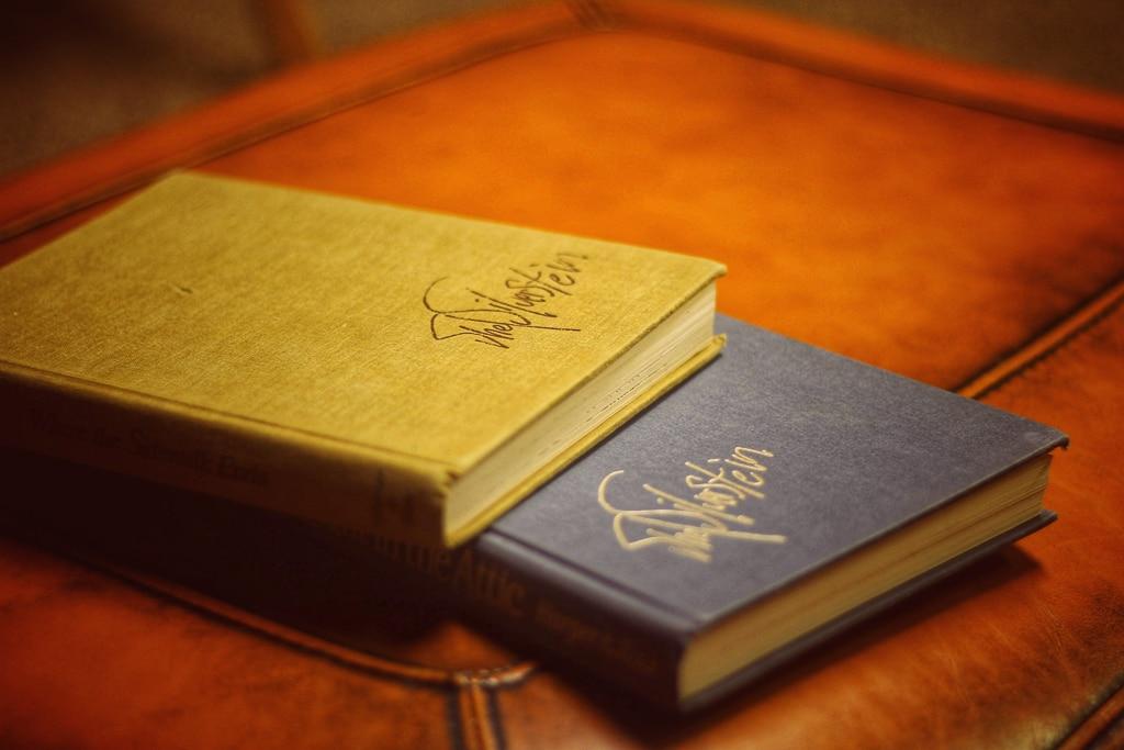 Photographie de deux carnets de voyage à la couverture rigide