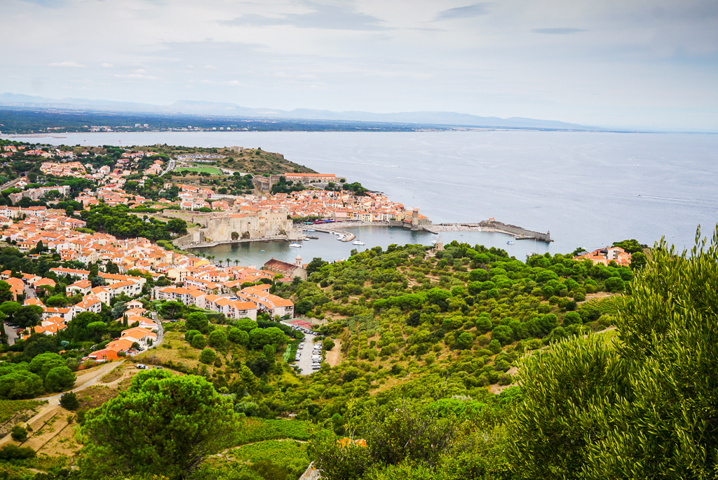 Photographie de la ville de Collioure vue depuis le fort Saint Elme
