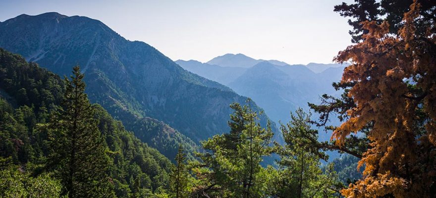 Photographie des Gorges de Samaria prise depuis le départ de la randonnée